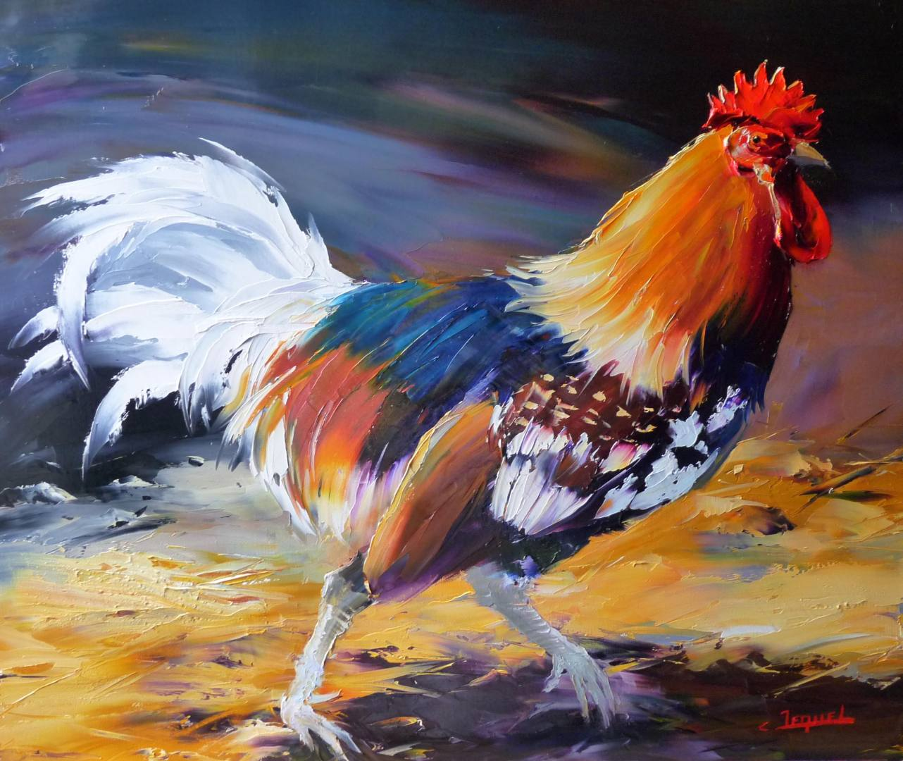 Coq aux plumes blanches